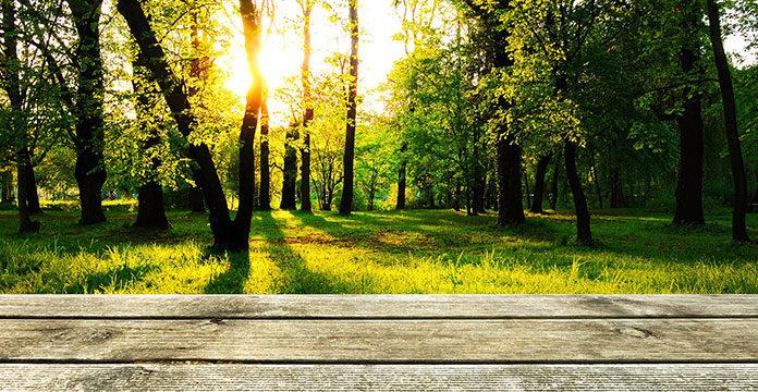 Tarasy drewniane - jak połączyć dom z ogrodem