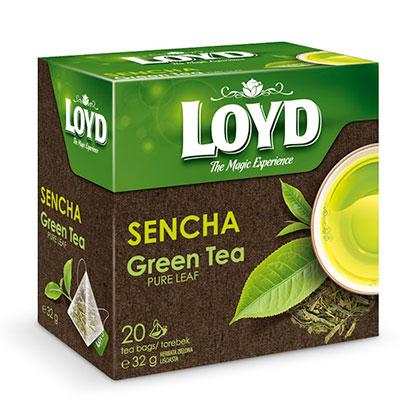Herbata Loyd - dlaczego warto pić ją regularnie?