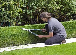 Narzędzia niezbędne w utrzymaniu zadbanego ogrodu