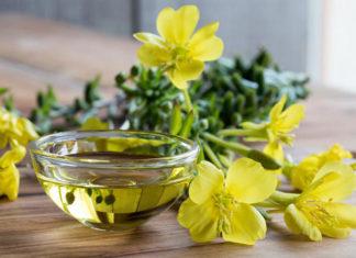 Pozytywne właściwości oleju z wiesiołka