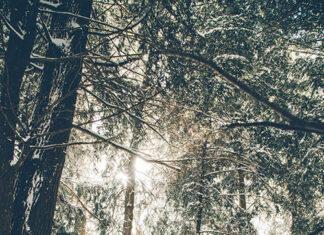 zima w górach
